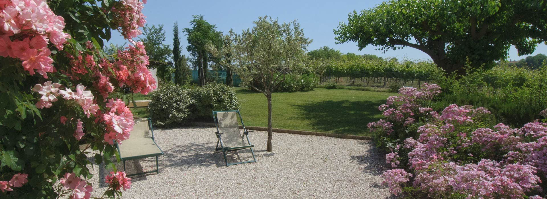Vigna Sant'Amico Country house Esterni